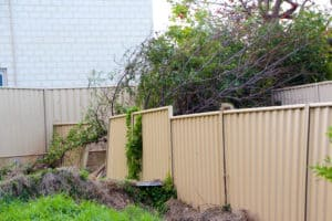 Damaged fence falling over due to natural decay from water and moisture
