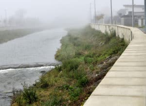 Flood barrier around water and bushes during a hurricane
