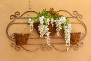 Iron decor and hanging flowers on outdoor wall