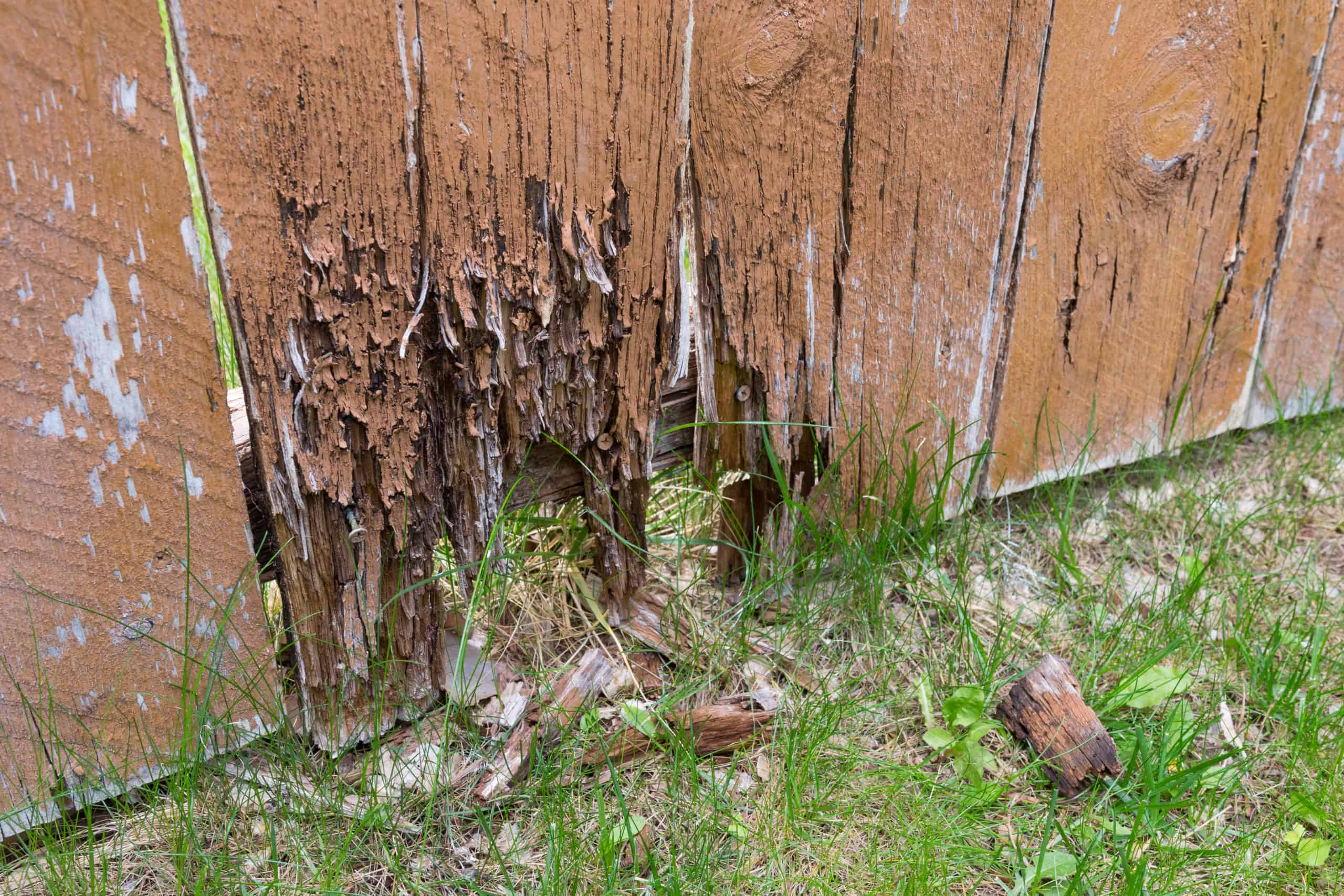 Brown wooden fence with rotting bottom