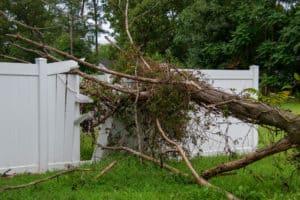 Heavily damaged vinyl fence and tree