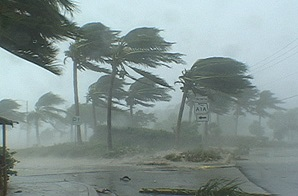 storm-resistant fencing